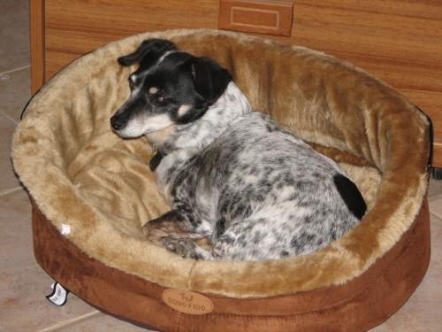 Nancy in her new bed