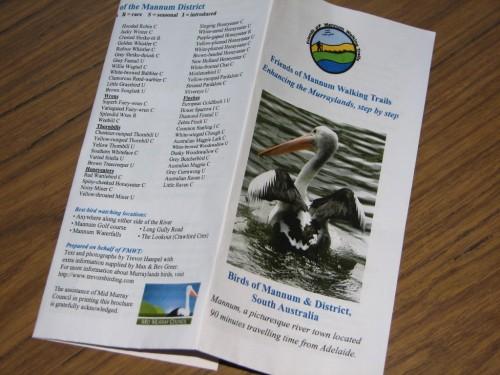 The Mannum Bird Watching brochure I wrote