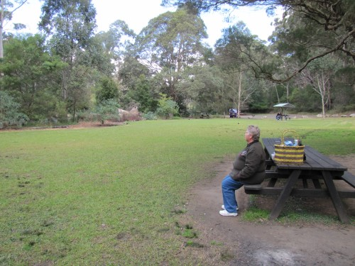Our picnic area in the Lane Cove National Park